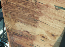 欠陥住宅を調査する建築士のブログ-屋根の雨漏り