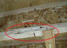 欠陥住宅を調査する建築士のブログ-梁破損