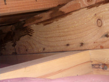 欠陥住宅を調査する建築士のブログ-屋根結露