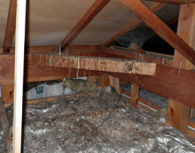 欠陥住宅を調査する建築士のブログ-鳥の糞