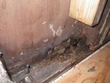 欠陥住宅を調査する建築士のブログ-雨漏り