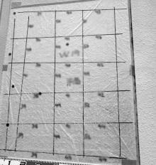 欠陥住宅を調査する建築士のブログ-鉄筋探査